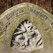 Old gravestone — Stock Photo #4556635