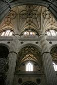 Salamanca — Foto de Stock