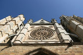 Leon cathedral — Stock Photo