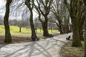 Birmingham park — Stock Photo