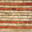 Old brick wall — Stock Photo #4599738
