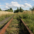 Old railroad - Stock Photo