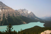 Peyto Lake — Stock Photo