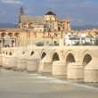 Cordoba — Stock Photo #4643891