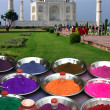 Original view of the Taj Mahal — Stock Photo