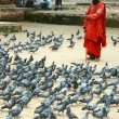 Pigeons and a monk - Stock Photo
