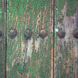 Texture green wood — Stock Photo