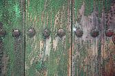 Texture green wood — Stock Photo