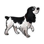 Cocker Spaniel dog — Stock Vector