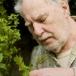 Baby boomer gardener close-up — Stock Photo