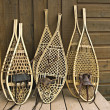 Assorted snowshoes - Stock Photo