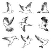 Birds. Vector illustration. — Stock Vector