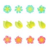 Set of floral design elements. Vector illustration. — Stock Vector