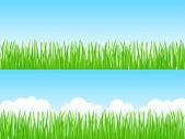 Grass. Vector illustration. — Stock Vector