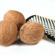 Nutmegs — Stock Photo
