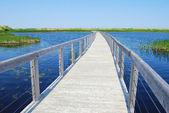 Boardwalk on P.E.I. — Stock Photo