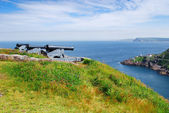 Cannons in St. John's — Stock Photo