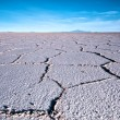 Stock Photo: Salt Flat