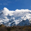 Mount Cook — Stock Photo #4444999