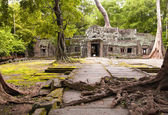 Ta Prohm — Foto de Stock