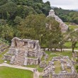 Stock Photo: Palenque Panoramic