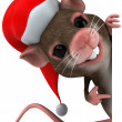 Fun mouse — Stock Photo