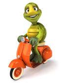 Schildkröte und ein roller 3d-illustration — Stockfoto