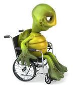 Turtle op de rolstoel 3d illustratie — Stockfoto
