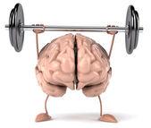Cerebro — Foto de Stock