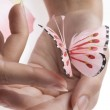 The pink butterfly — Stock Photo #4475993