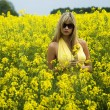 Girl in yellow field — Foto de Stock