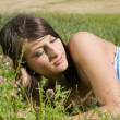 In the grass — Stock Photo #4702857