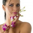 Graceful woman with pink orchid — Stock Photo #4703997
