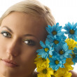 Yellow and blue flower — Stockfoto