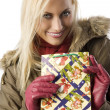 Blond girl with christmas bag — Stock Photo #4705945