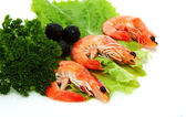Shrimp with lettuce, parsley and black olives — Stock Photo