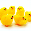 Stock Photo: Easter Chicks Grouped