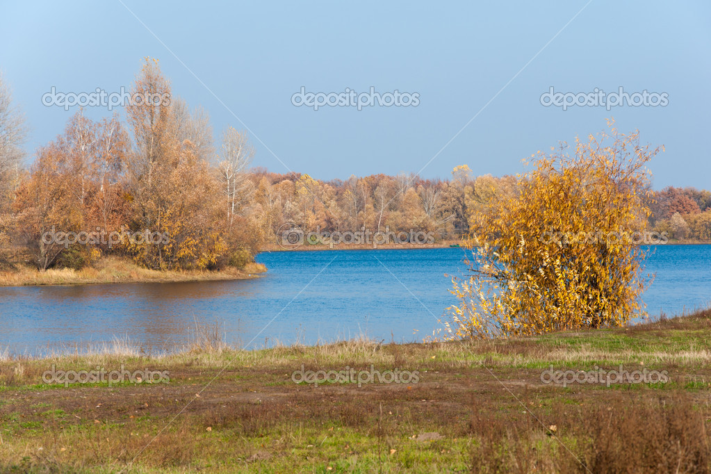 Beautiful golden autumn landscape with trees near the river  Stock Photo #4506962