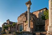 římské fórum — Stock fotografie