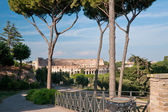 View at the colosseum from the Palantine Hill in Rome. Italy — Stock Photo