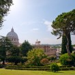 View at the St Peter's Basillica — Stock Photo