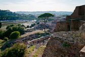 Domus Augustana and Circus Maximus — Stock Photo