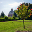 Vatican gardens — Stock Photo