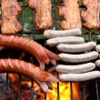 Barbecue — Stock Photo #4416135