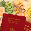 Passport and Cash - Stock Photo
