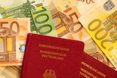 Passport and Cash — Stock Photo
