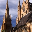 St. Mary's Cathedral. Sydney - Stock Photo