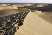 Maspalomas — Stock Photo
