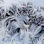 Ice pattern — Stock Photo #4930627