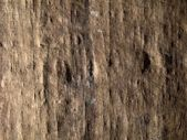 Texture of old papurus in sidelight — Stock Photo